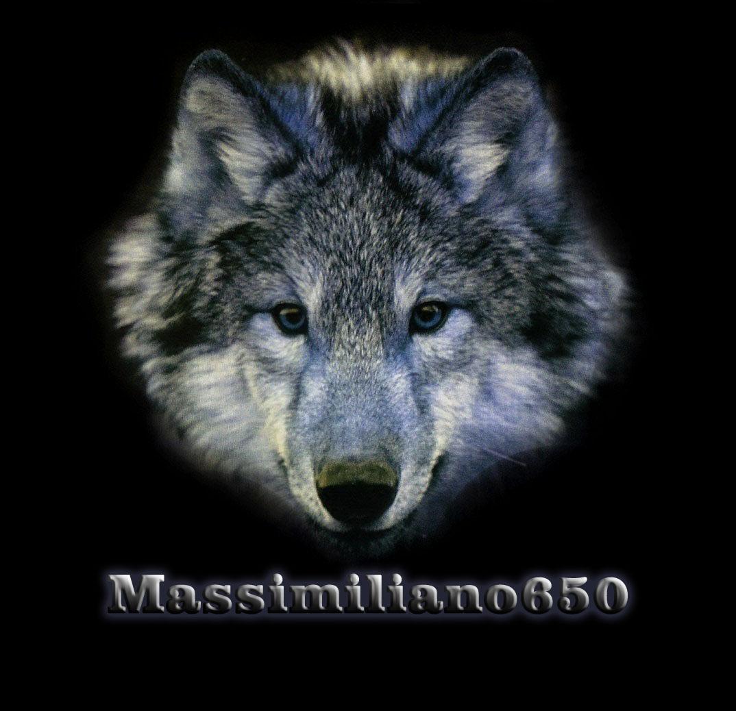 Foto di massimiliano650